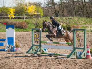 A girl caucasian horse rider riding and jumping a hurdle with her beautiful brown sport pony