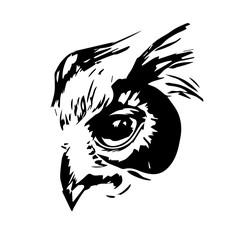 owl's head. tattoo. vector illustration