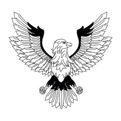 Eagle hawk symbol vector illustration graphic design