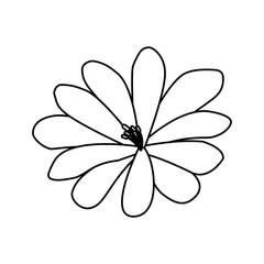 flower natural flora decoration icon