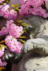 beautiful spring background with sculpture of a bear in pink Sakura flowers  in springtime