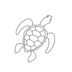 simple drawing of a turtle with a haughty expression