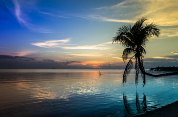 Peaceful blueish sunset landscape on the beach with silhouette of palm tree and man walking on shallow water in the island of Koh Phangan, Thailand