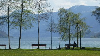 Springtime in Switzerland - Zuggersee Cham Villette park