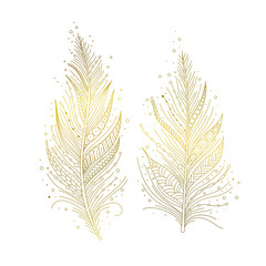 Golden bird feathers isolated, hand drawn decorative elements in boho style. Vector illustration.