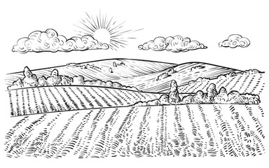 Rural landscape, vector vintage hand drawn illustration.