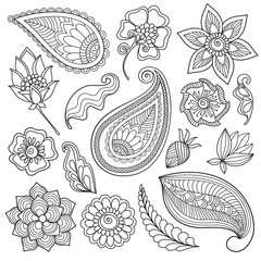 Set of floral elements. The  magic drawn  flowers and plants for decoration