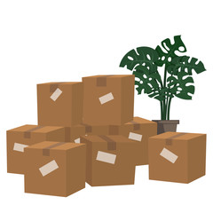 Set of boxes for moving and houseplant isolated on white background.