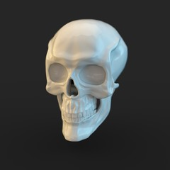 White glossy skull with light reflections isolated on black background