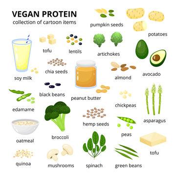 Set of vegan protein sources.