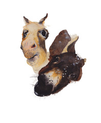 Donkey Watercolor painting. Watercolor hand painted cute animal illustrations.