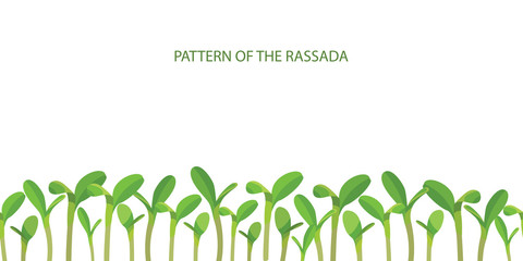 Patterns of seedlings. Crop production. Growing vegetables. Sowing gardening. Growth of plants. Vector.