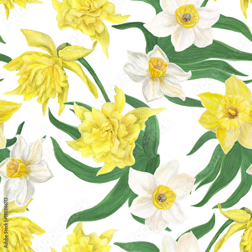Watercolor Painting Seamless Pattern With Daffodil Flowers