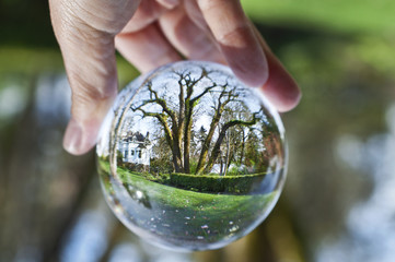 Crystal ball sphere reveals garden with Victorian house/Close up view of Mossy ancient tree in crystal ball