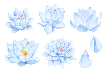 Beautiful Blue Lotus Flowers. Watercolor illustration. Pure Water Blossom. Yoga, Zen Meditation Symbol. China and Japan Symbol.