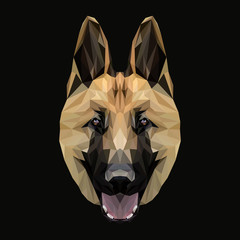 Shepherd low poly design. Triangle vector illustration.