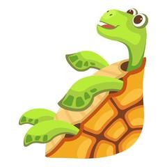 Beautiful turtle icon. Cartoon illustration of beautiful turtle vector icon for web