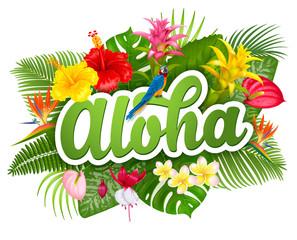 Aloha Hawaii lettering and tropical plants