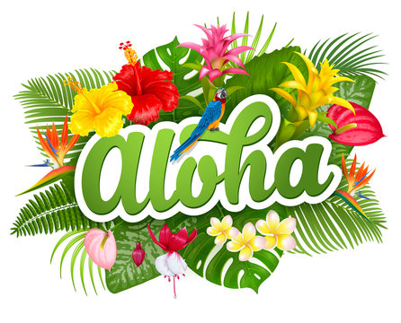 Aloha Hawaii lettering and tropical plants