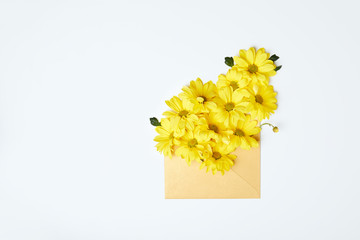 Yellow chrysanthemums in envelope isolated on white
