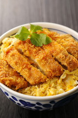 カツ丼 Pork cutlet on rice. Japanese food.