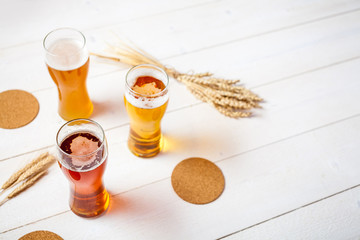 glasses of assorted beer with wheat for tasting on a wooden table background with copy space for text