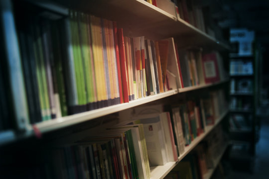 books in the night library