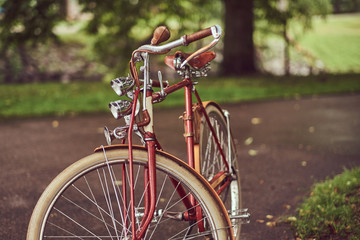 Image of a red vintage bicycle in a city park.