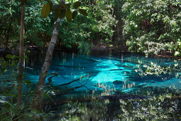 Sra Morakot Blue Pool at Krabi Province, Thailand