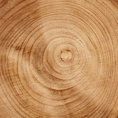 Board from a natural tree