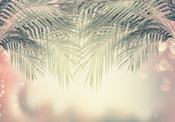 Wall Mural - Creative summer tropical nature background with palm leaves , sunshine and bokeh