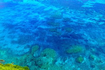 真夏の宮古島、三角点の真下にある珊瑚礁