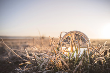 Crystal ball in frozen grass in the sunrise