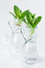 Green young mint leaves in bottle with mineral water on soft white wood board. Summer background, vertical.
