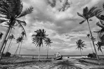 Black and white scenery of fisherman village with coconut tree, boat and beach.