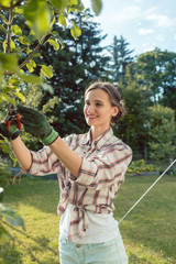Woman in garden outdoors checking fruit tree