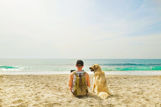 Rear view of man & his dog sitting at beach watching ocean waves, clear sunny day. Fit programmer freelancer male working on laptop computer at sea w shepherd canine. Background, copy space, landscape