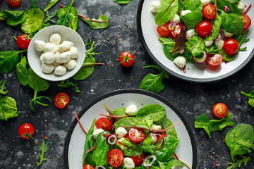 Fresh Cherry Tomato, Mozzarella salad with green lettuce mix and red onion. served on plate. healthy food.