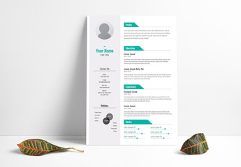 Resume Layout with Gray Sidebar and Teal Accents