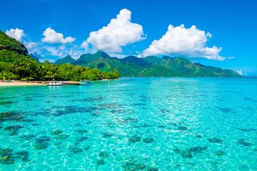 Obraz Lagoon landscape, Moorea - fototapety do salonu