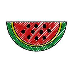 fresh watermelon fruit healthy food vector illustration design