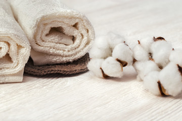Spa concept. Cotton flower plant and cotton rolled towel on white wooden background with copy space. Toned photo.