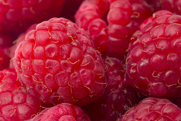 A Background of Red Raspberries