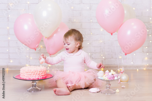 First Birthday Party Concept