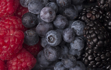 A Background of the Fruits of the Forest : Raspberries, Blueberries and Blackberries