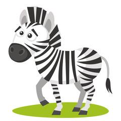 Wild animals. Zebra Wildlife Vector