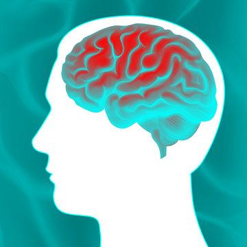 Glowing human brain