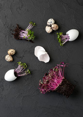 Fresh chicken and quail eggs and watercress on a black background with free space for text..