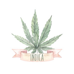 Hand drawn watercolor illustrations - Medical cannabis, Indica. Marijuana sketch. Perfect for invitations, greeting cards, posters, prints
