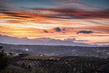 Landscape at dusk, Greece